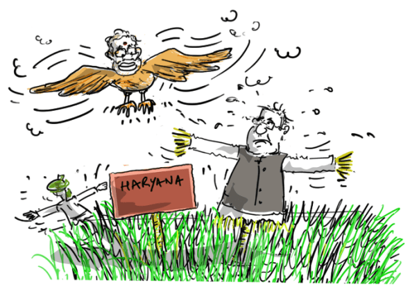 haryana election cartoon,hooda cartoon,modi cartoon,chautala cartoon,mysay.in,political cartoons,