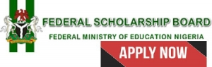 2020 Federal Government BEA Undergraduate & Postgraduate Scholarships For Study Abroad