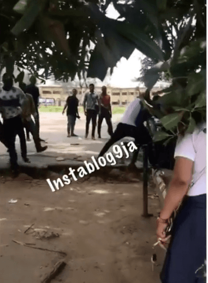 Two Uniport Students Seen Fighting Over A Girl At A Love Garden