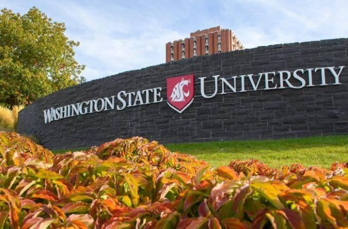 2020 Washington State University International Academic Awards - USA