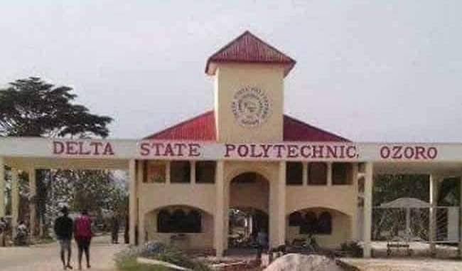 Delta Polytechnic Burns 5,000 Face Caps Seized from Students to Curb Indecent Dressing