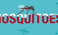 Malaria Disease in Ethiopia