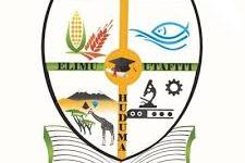 Julius Nyerere University of Agriculture Application Form