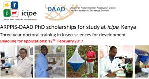 2017 ARPPIS-DAAD Scholarships For Developing Countries - Kenya
