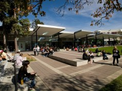 University Of Waikato & Institute Of Healthy Ageing Scholarship Programs - New Zealand