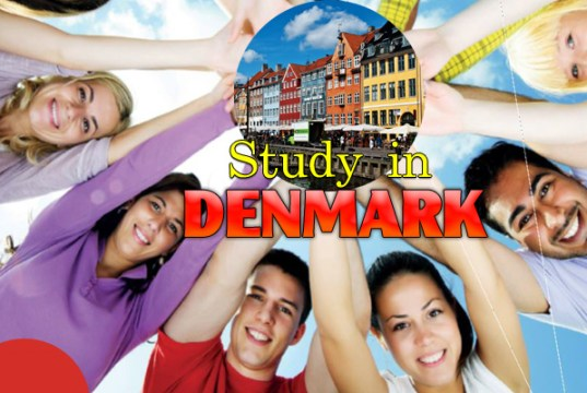 30-50% Danish Government Cultural Agreement Scholarships - 2018