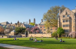 $3,000 Beinecke Library Visiting Student Fellowships At Yale University, USA - 2018