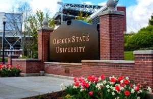 International Cultural Service Program (ICSP) Scholarships At Oregon State University,USA - 2018