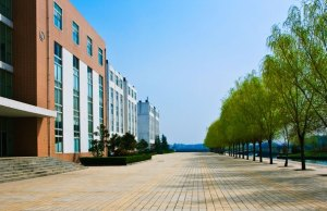 Management For Healthcare Scholarships At SDA Bocconi, Italy - 2018