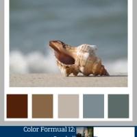 Color Formula 12: Seashell