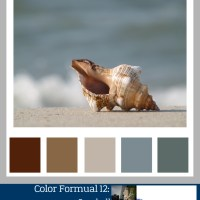 Color Formula 12: Seashell