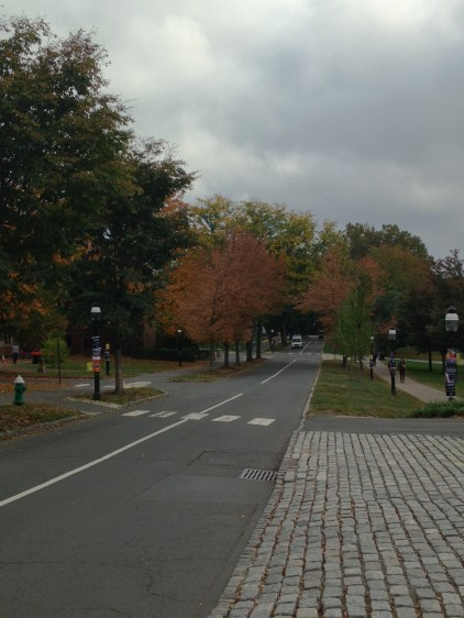 Looking toward Butler College