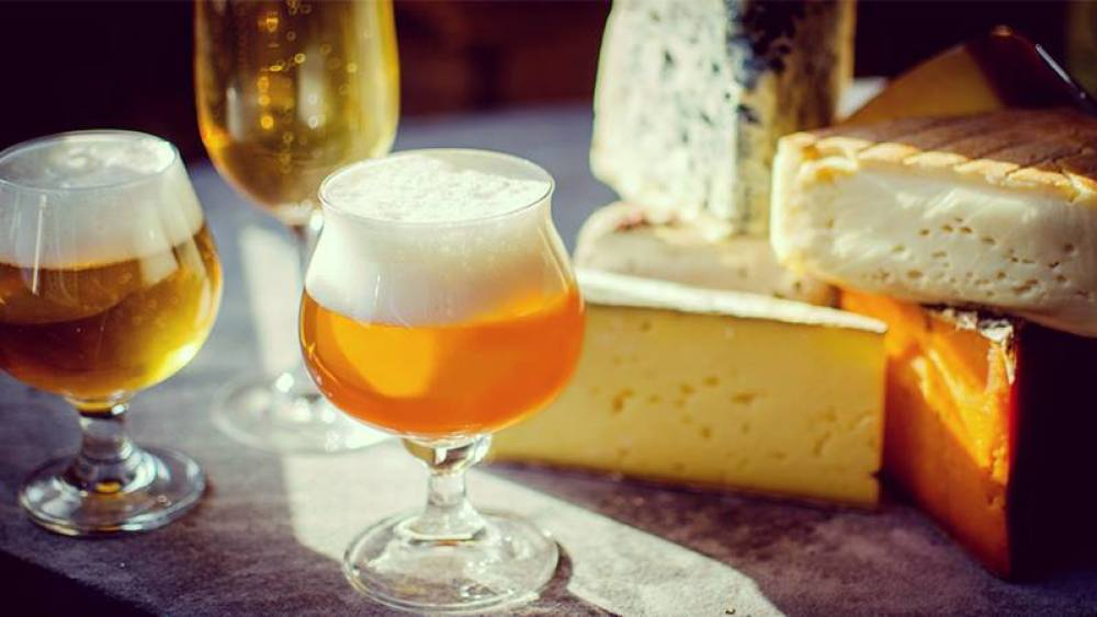 Beer and cheese festival