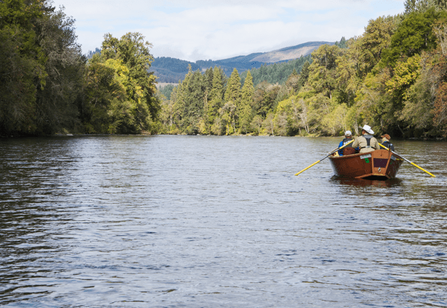 It's Time To Explore Finn Rock Reach on The McKenzie River