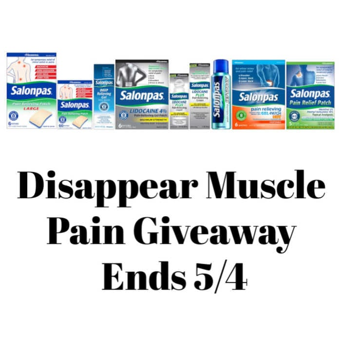 Disappear Muscle Pain Giveaway ~ Ends 5/4 @salonpas @las930 #MySillyLittleGang