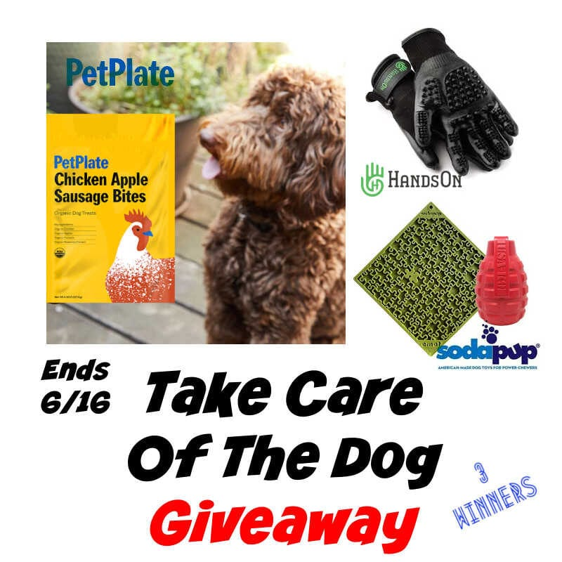 Take Care Of The Dog Giveaway ~ Ends 6/16 #MySillyLittleGang
