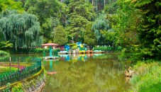 Lake in sim park coonoor