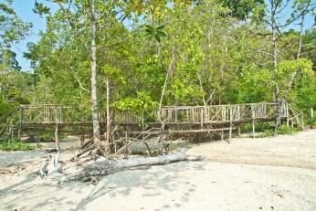 Small bridge at chidiya tapu