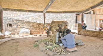 Sugarcane juice seller