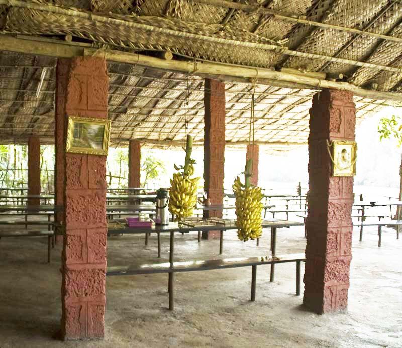 Banana Fruit in Dinning Area