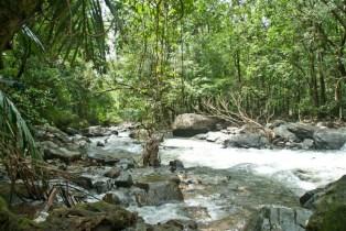 dudhsagar waterfall goa