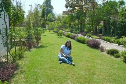 garden-area
