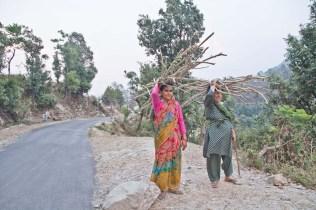 Women raking wood