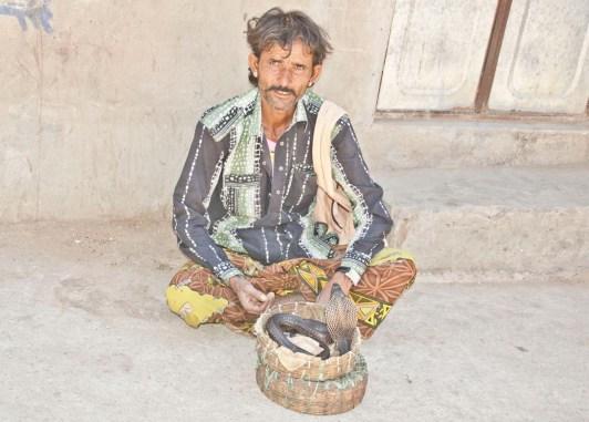Pushkar market snake charmer