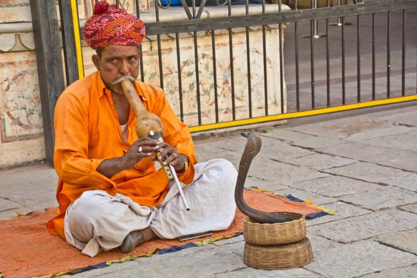 City palace jaipur snake charmer