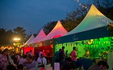 Palate fest at night