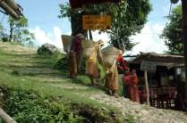 Way to world peace pagoda Pokara Nepal