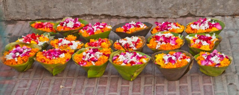Flowers for offering