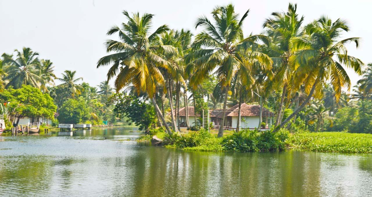 Kumarakom or Alleppey and Backwaters of Alleppey in Kerala
