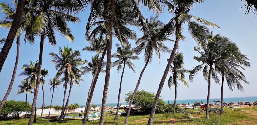 Auroville Beach