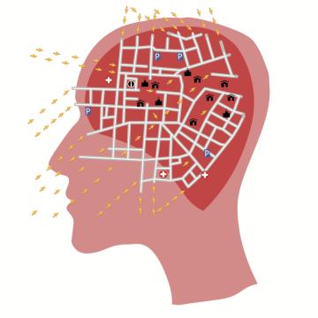 The Brain's Hidden Shortcuts