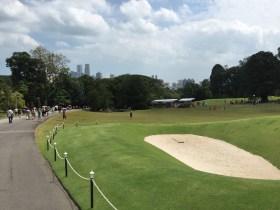 Runde Golf gefällig?