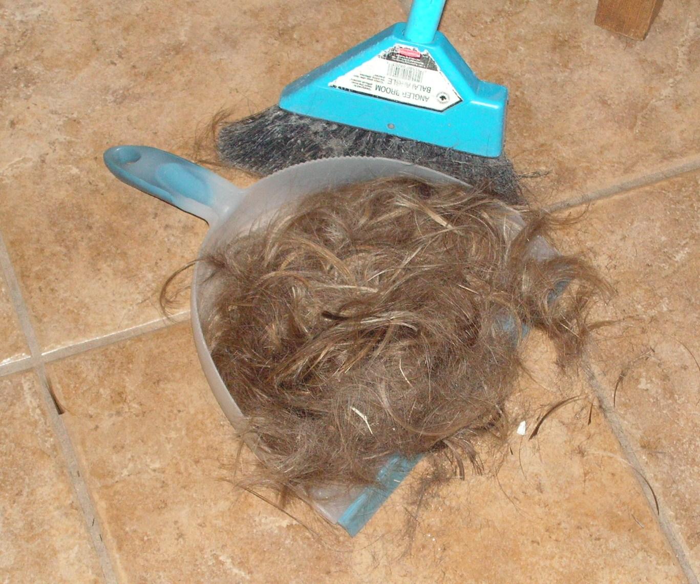 aus-haircut-007