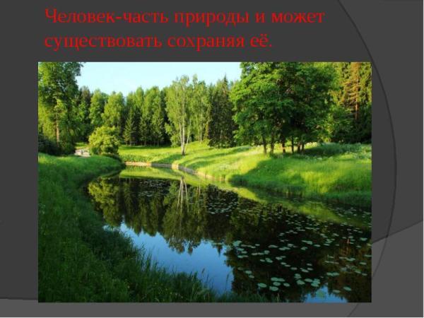 Защита природы - презентация, доклад, проект