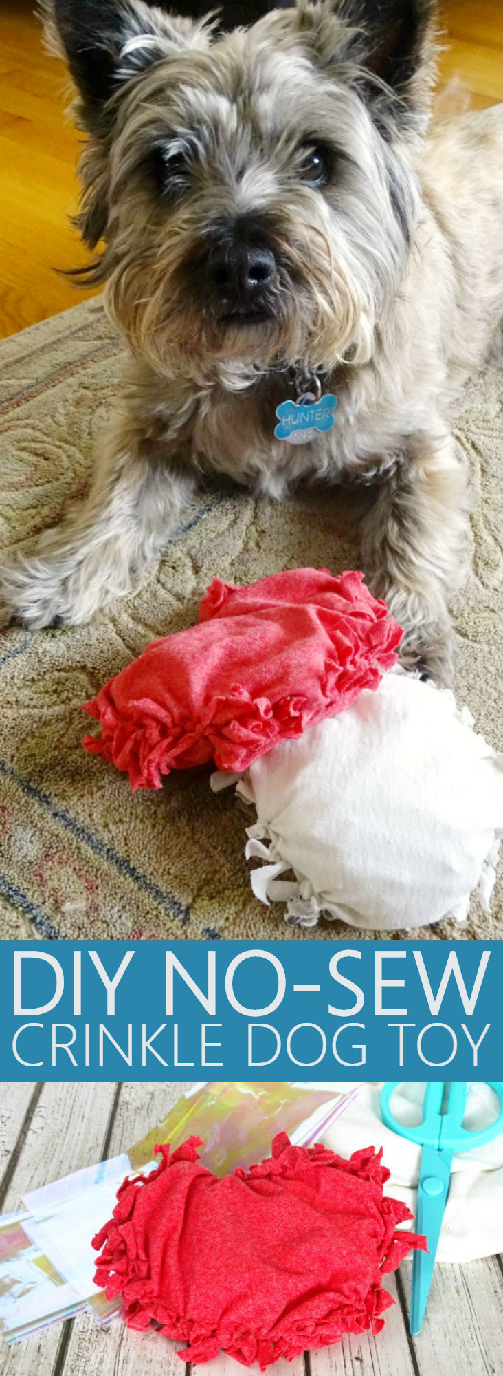 DIY No-Sew Crinkle Dog Toy (Guest Post)