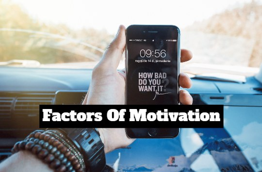 4 factors of motivation