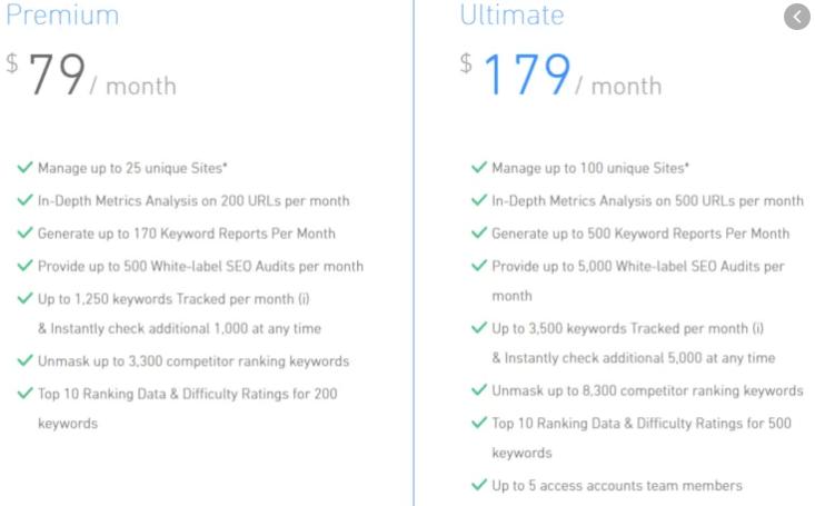 serped.net pricing