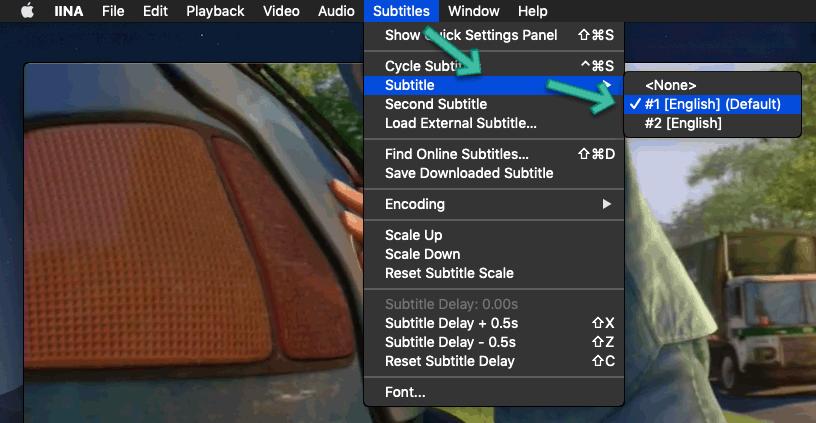 IINA Subtitle Mac