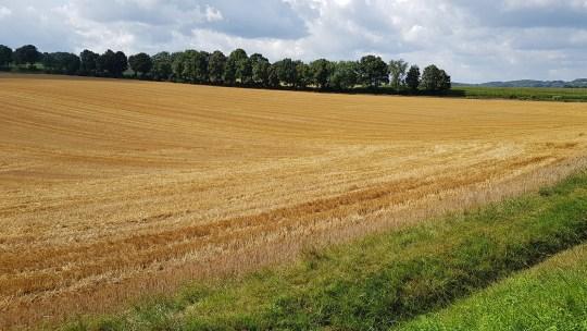 Limburg, het land van de Maas en de zachte G