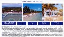 Miami real estate p3crop