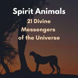 Spirit Animals - Cover