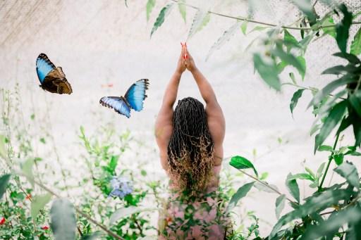 spiritual awakening, blue butterflies, student of life