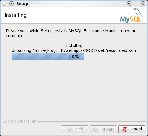 Installing the MEM 3.0 Service Manager - Step 10: Installation is in progress