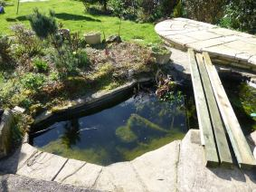 Charlotte Wiles Pond