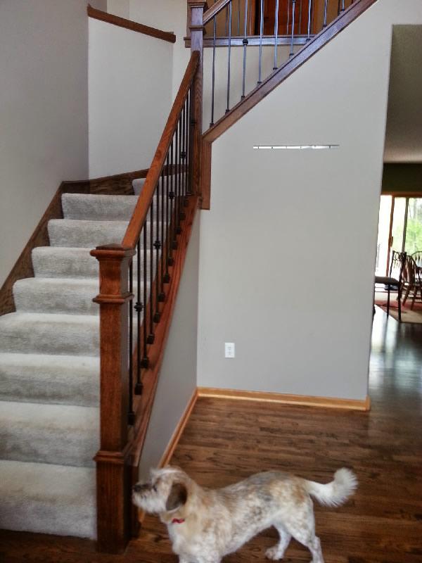 Clean Style Oak And Iron Stairway MyStairways