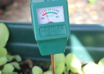 How to Use Soil Moisture Meter to Boost the Plant Growth